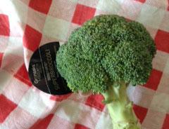 Superbroccoli