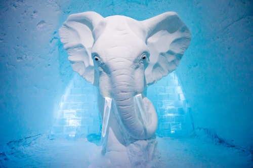 art-suite-elephant-in-the-room-icehotel-sweden.jpg